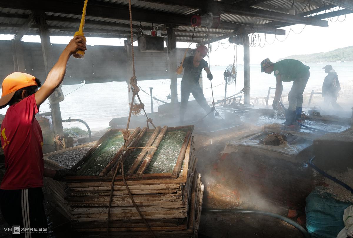 Các vỉ cá được đưa vào luộc nhờ ròng rọc
